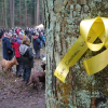 "Thumbnail image for ""The woods were my playground"" – Chopwell Wood Protest"