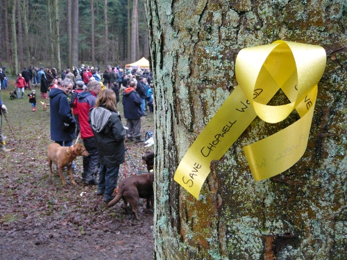 Save Chopwell Woods Protest