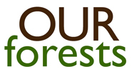 OurForests!