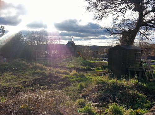 sun over allotment