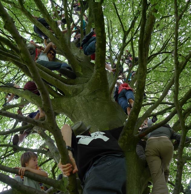 UpTrees 69 - 44 people tree