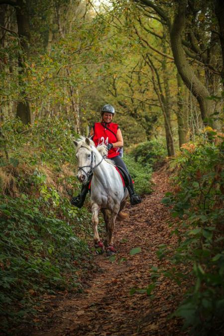 hopwas_woods_horse_rider
